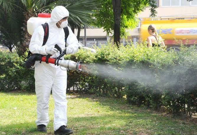 Böcek İlaçlama Firması Seçimi